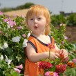 Stock Photo: Little girl in thicket of flowers