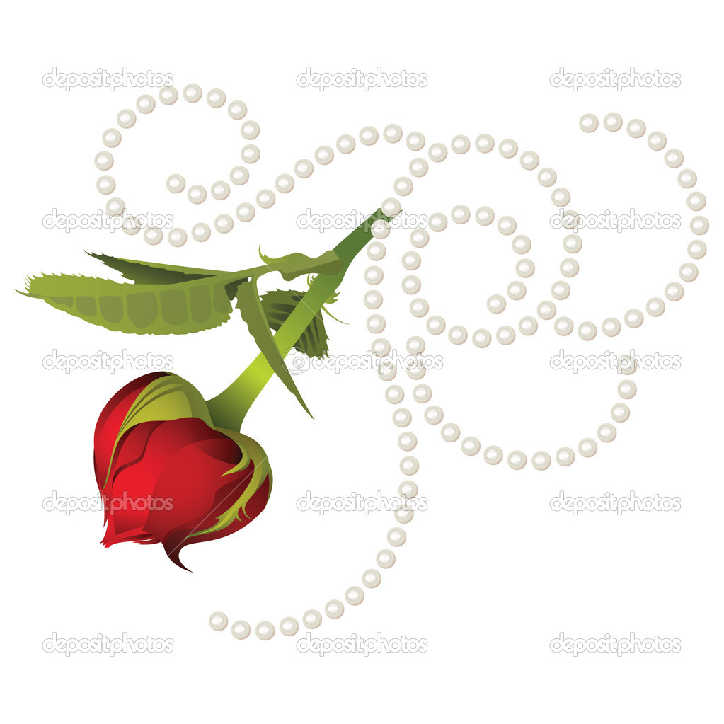 Heart shaped rose with pearls  Stock Vector #5355651
