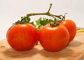 Fresh tomatoes close-up — Stock Photo