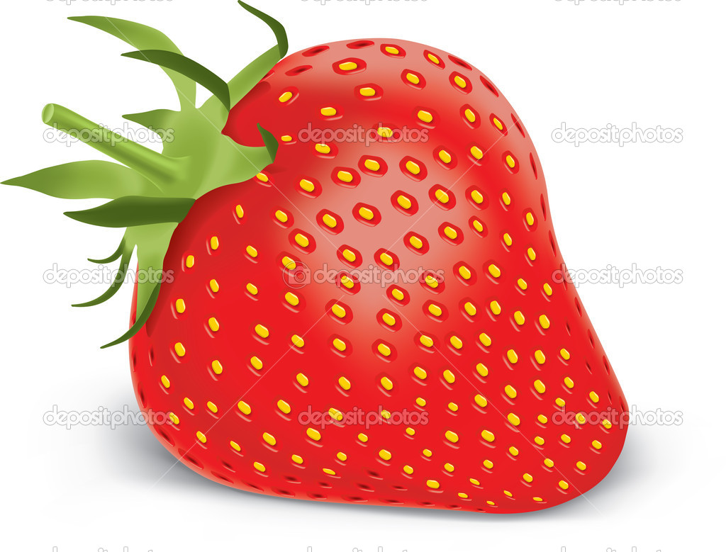 Fresh sweet strawberry isolated on white — Stock Vector #5087714