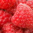 Raspberry, berry, food, fruit, red, vitamins, and beautiful — Stock Photo