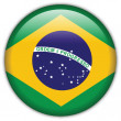 Brazil flag icon — Stock Vector