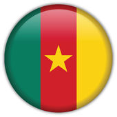 Cameroon flag icon — Stock Vector