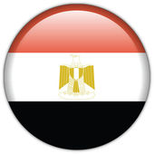 Egypt flag icon — Stock vektor