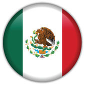 Mexico flag icon — Stock Vector