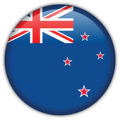 New Zealand flag icon — Stock Vector