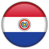 Paraguay flag icon — Stock Vector