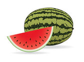 Watermelon illustration vector — Stock Vector