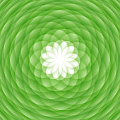 Abstract green ornament — Stock Photo