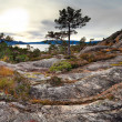 Norwegian landscape — Stock Photo