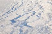 Snow shining — Stock Photo