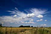 Summer afternoon at country side, beatiful clouds on deep blue sky — Stock Photo