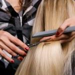 Hairdresser doing haircut — Stock Photo