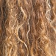 Texture of blond hair — Stock Photo #5099752