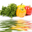 Wet appetizing vegetables with parsley — Stock Photo