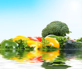 Improbable island from fresh vegetables — Stock Photo