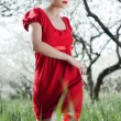 Stock Photo: Glamor womin red dress