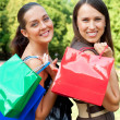 Two friends with bags — Stock Photo #5157081