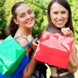 Two friends with bags - Stock Photo