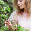 Woman looking at small flower - Stock Photo