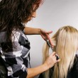 Stock Photo: Hairdresser working with client