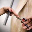 Professional hairdresser in the work — Stock Photo #5161663