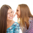 Cheerful girls speaking - Stock Photo