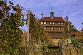 Esslinger Burg und Weinberge — Stock Photo