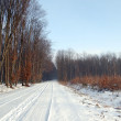 Foto de Stock  : Winter road