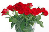 Bouquet of red roses in vase — Stock Photo
