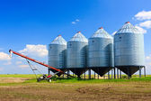 Grain Silos — Stock Photo