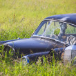Rusty Car in the Tall Grass - Stock Photo