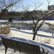 Bench along the River in Winter — Stock Photo