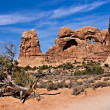 Arches National Park — Stock Photo #5129564