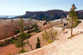 Trails of Bryce Canyon — Stock Photo