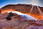 Mesa Arch at sunrise, Canyonlands National Park, Utah, USA — Stock Photo