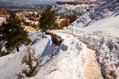 Bryce canyon sayısı gündoğumu noktasından — Stok fotoğraf