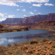 Colorado River at Lees Ferry Crossing — Stock Photo #5158418
