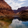 Colorado River at Lees Ferry Crossing — Stock Photo #5158436