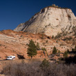 Zion National Park Scenery — Stock Photo