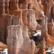 Bryce Canyon Hoodoo - Photo