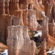 Bryce Canyon Hoodoo — Stock Photo #5158884