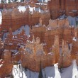 Bryce Canyon Sandstone Hoodoos - Photo
