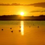 Sunset Reflections — Stock Photo #5159504