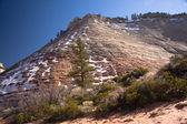 Checkerboard Mesa at the Zion National Park — Stock Photo