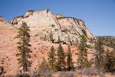 Zion National Park Landscape — Stock Photo