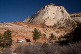 Zion National Park Scenery — Stock Photo