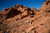 The Valley of Fire Landscape — Stock Photo