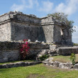 Tulum Palace or Home - Lizenzfreies Foto
