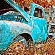 Old Farm Truck — Stock Photo #5163709
